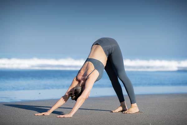 Anatomy of Vinyasa Yoga